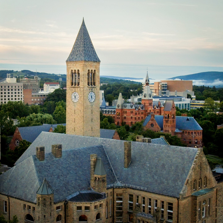 about cornell university