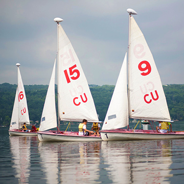 Sailboats on Cayuga Lake